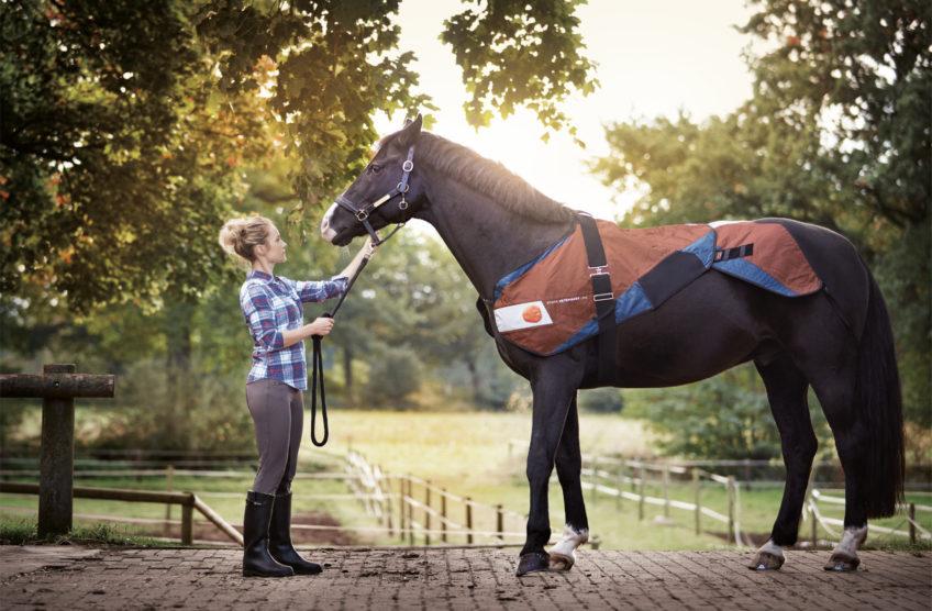 BEMER Veterinary line voor het welzijn van uw paard